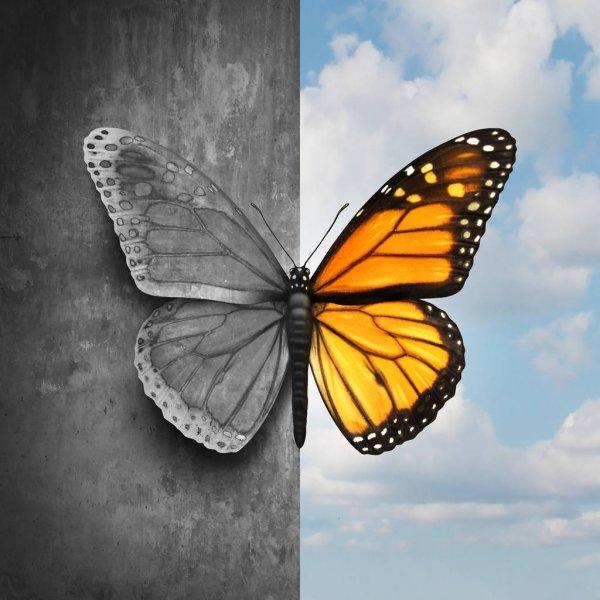 Respiration; Breath; BreathCoach ;AquıtaıneRespiration ;RespirationBordeaux ;IgersMeditation ;Aquitainemeditation ;MeditationBordeaux ;meditation ;meditationteacher ;AnnBostInstitut ;alive ;LifeCoach ;CoachdeVie; .consciousness ; methodeBost ;AnnBost ;motivation ;mind ;abondance ;Attraction ;awakeness ;FormationRespiration ;LivaCoaching